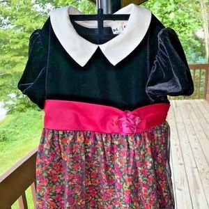 B.T. Kids dress 3T floral special occasion velvet